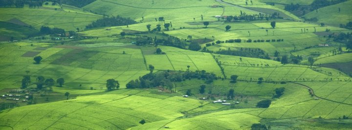 Kenyan central highlands (Credit: Getty Images)