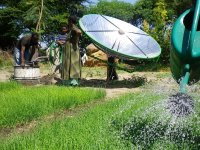 Sunflower solar pump